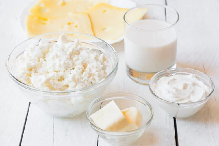 diary products - milk, cheese, butter and assorted items